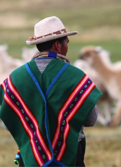 latin american partnership